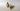 Keramisk ventilhus-insats PHL034